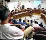 assemblea consulta
