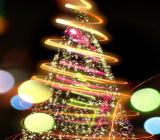 Albero Natale concorso dicembre 17